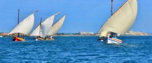 croisiere_evasion_bateau_the_boat_experience_activite_mer_collioure_barcares_voile_mer-decouvrez
